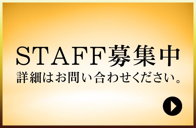 STAFF募集